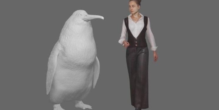 کشف فسیل پنگوئنی به اندازه یک انسان