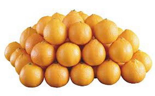 درخشش پرتقال های تامسون رودسر در شب عید سال جاری