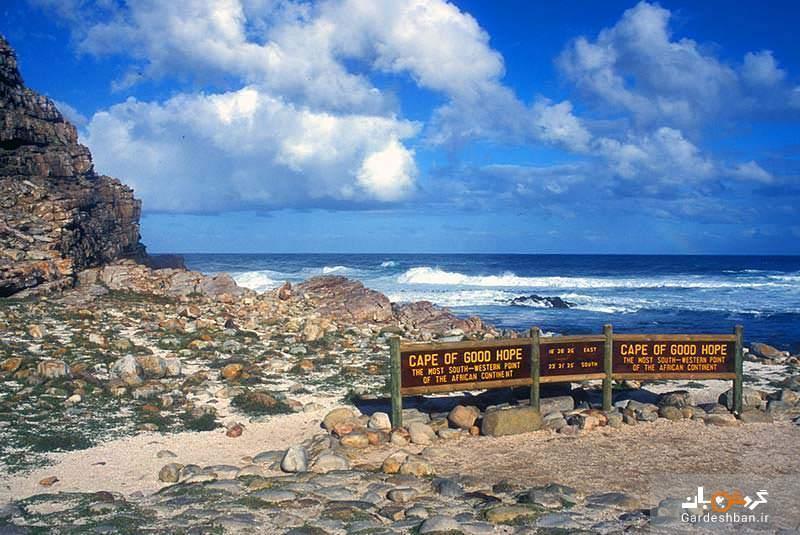 دماغه امید نیک، شبه جزیره ای دیدنی در آفریقای جنوبی، عکس