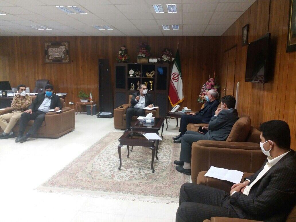 خبرنگاران خط تولید مرغ استاندارد برای صادرات به عراق باید راه اندازی شود