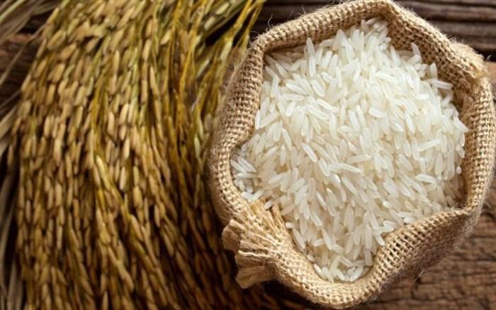 50 میلیون نفر توان خرید برنج ایرانی را ندارند