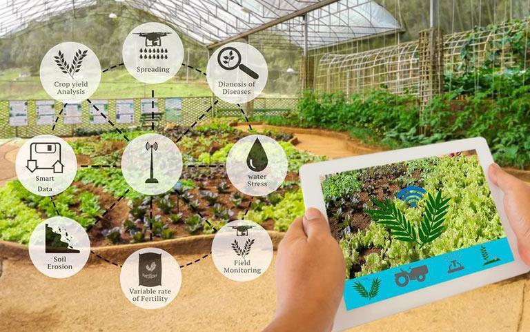 از کشاورزی دیجیتال چه می دانید؟